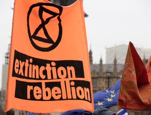 """Extinction Rebellion tell the Queen she has """"blood on her hands"""""""